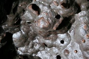 2go-disque-2-usa-2007-344.jpg