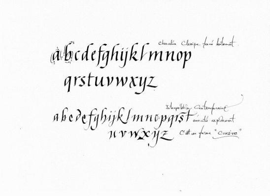 calligraphie1001.jpg
