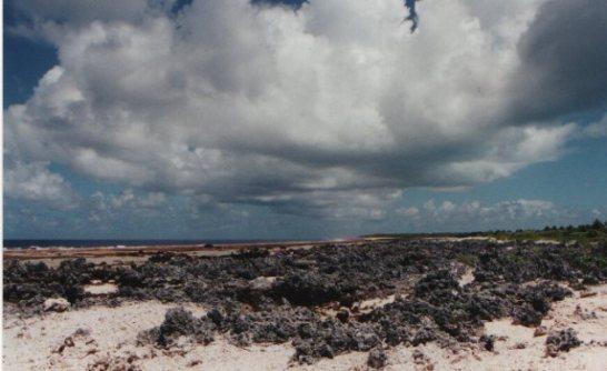 atoll-rangiroa-2.jpg